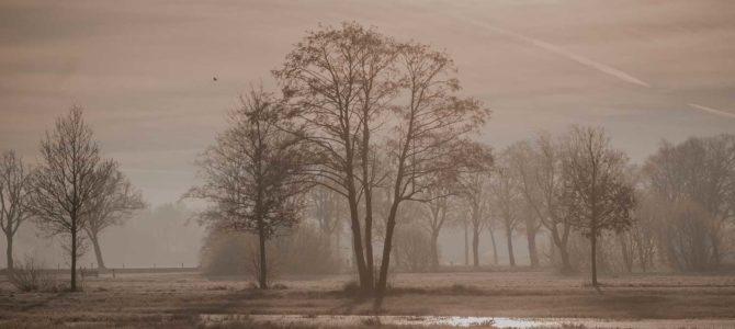 Winterfotos Middelveen Rijssen