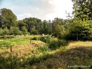 Landgoed Colckhof (12)