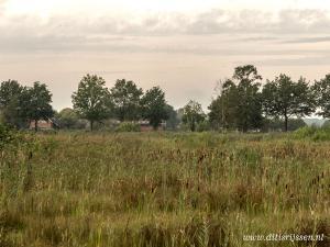 Natuurgebied Overtoom Middelveen (1)