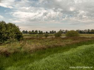 Natuurgebied Overtoom Middelveen (10)