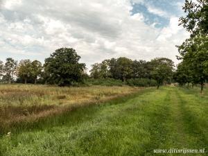 Natuurgebied Overtoom Middelveen (3)