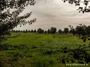 Natuurgebied Overtoom Middelveen (39)