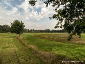 Natuurgebied Overtoom Middelveen (4)