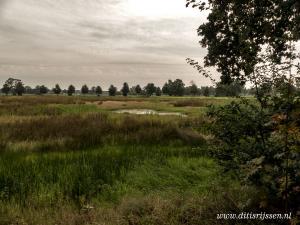 Natuurgebied Overtoom Middelveen (40)