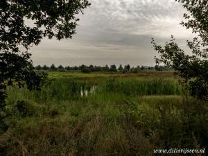Natuurgebied Overtoom Middelveen (48)