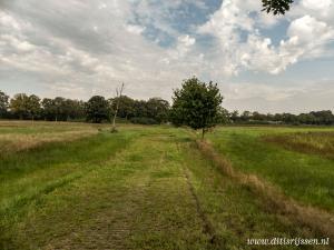 Natuurgebied Overtoom Middelveen (5)