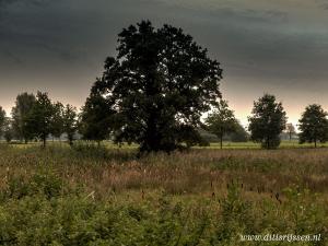 Natuurgebied Overtoom Middelveen (54)
