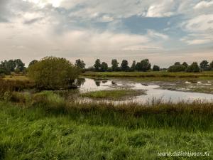 Natuurgebied Overtoom Middelveen (7)