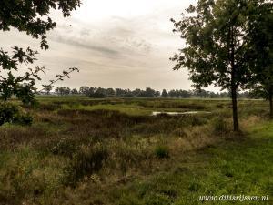 Natuurgebied Overtoom Middelveen (9)