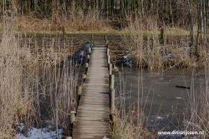 wandelroutes-vuurvogelpad-(103)