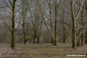 wandelroutes-vuurvogelpad-(111)
