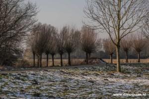 wandelroutes-vuurvogelpad-(45)